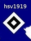 hsv1919